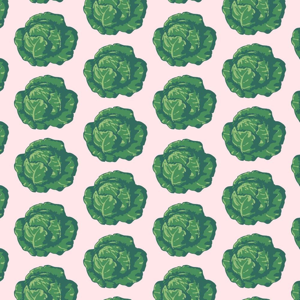 Jennis-Prints-Graphic-Design-Froda-brand-identity-kale-pattern